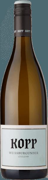 Weißburgunder Lösslehm 2019 - Weingut Kopp