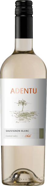 The Adentu Sauvignon Blanc by Vina Siegel shines in a clear light yellow in the glass. The nose reveals animating aromas of fresh citrus fruits with nuances of apple orange, grapefruit and the finest nuances of herbs. The palate is pampered by the vital interplay of fruit and acidity. Food recommendation for the Adentu Sauvignon Blanc This pure white wine from Chile is a great accompaniment to Cassoulet, fresh bread with cream cheese variations or vegetables with dips.