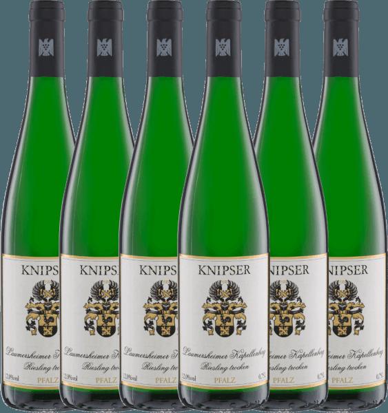6er Vorteils-Weinpaket - Laumersheimer Kapellenberg Riesling 2019 - Knipser