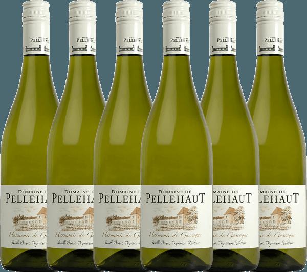 6er Vorteils-Weinpaket - Harmonie de Gascogne Blanc 2019 - Domaine de Pellehaut