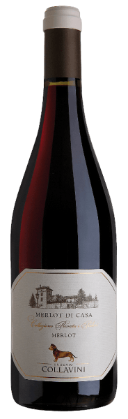 This pure rosso is 100% vinified from Merlot grapes and retains its taste through wood storage. The Merlot Riserva di Casa IGT by Eugenio Collavini reveals pleasant roasted notes as well as fine wood notes paired with a slightly spicy and finely tart fruit note of blackberries and raspberries. It is an excellent accompaniment to red meat, roasts, especially rabbits, pasta with tomato sauce and strong cheese.