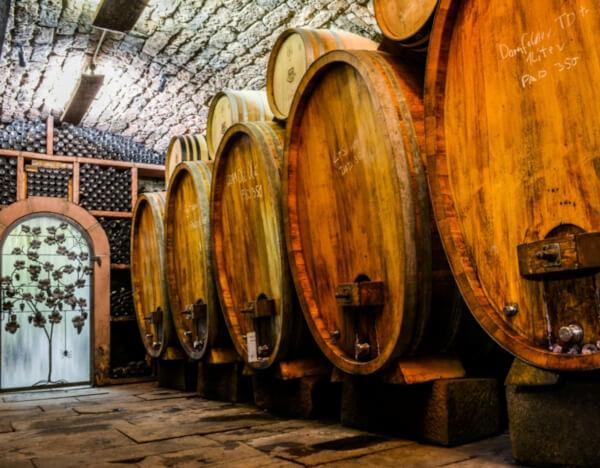 Wine cellar of Bergdolt-Reif & Nett