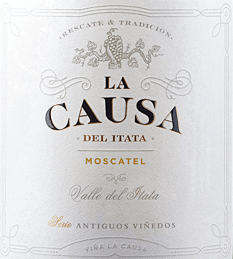 The Moscatel grape variety of La Causa has its home in the beautiful Valle del Itata - located in the Chilean wine region Valle Sur.  A bright straw yellow with golden highlights lies in the glass of this wine. The lush bouquet unfolds intense aromas of summer flowers, juicy ripened citrus fruits - especially lime and grapefruit - as well as grapes. The racial acidity refreshes the palate and is harmoniously integrated into the crisp body. The fermentation on the berry peels gives this Chilean white wine a wonderful structure and the storage on the fine yeast a silky fullness. The finale comes with a pleasant length.  Vinification of La Causa Moscatel In April, the optimally matured Moscatel grapes are harvested in Valle del Itata and initially strictly selected in the wine cellar. The material to be harvested is then gently squeezed and fermented for 7 days at a temperature of 16 to 18 degrees in a stainless steel tank. This wine then remains on the berry peels for 5 days. Finally, this white wine is aged in the steel tanks for 12 months on the fine yeast.  Food recommendation for the Moscatel La Causa Enjoy this dry white wine from Chile well chilled as a welcome aperitif. Or hand this wine over to finger food, grilled chicken or even fish and seafood.