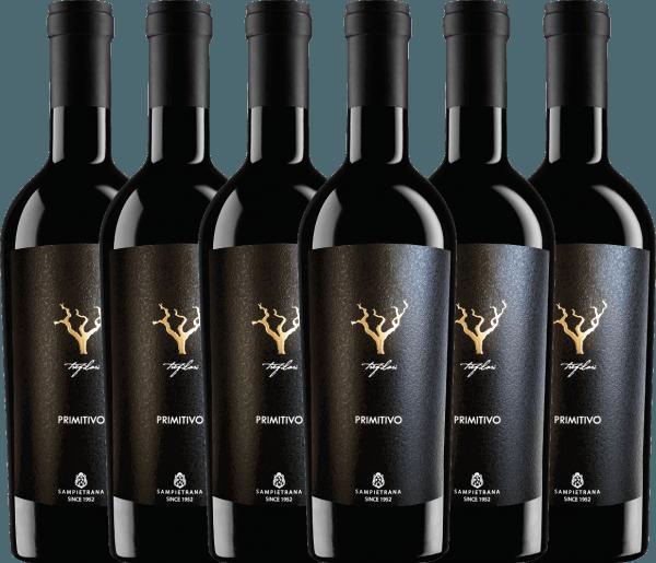 6er Vorteils-Weinpaket - Trefilari Primitivo 2019 - Cantina Sampietrana