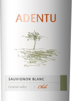 Vorschau: Adentu Sauvignon Blanc 2019 - Viña Siegel
