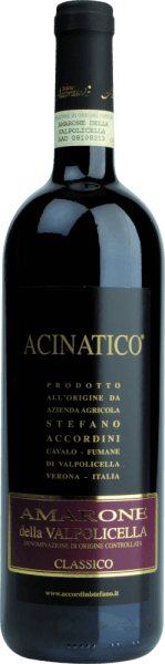 Acinatico Amarone Classico 2017 - Stefano Accordini