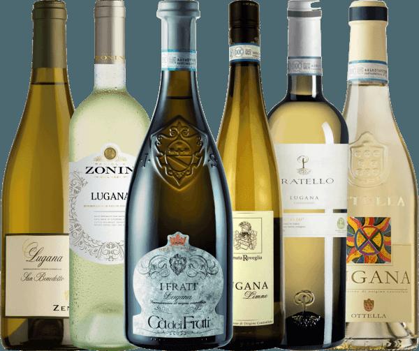 6er Probierpaket - Lugana Weine vom Gardasee