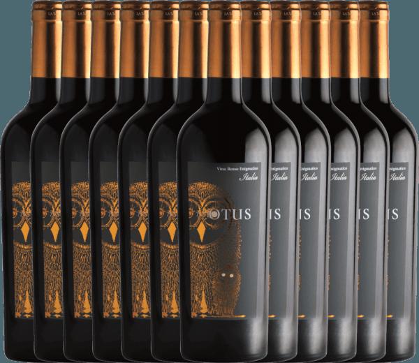 12er Vorteils-Weinpaket - Asio Otus Vino Varietale d'Italia - Mondo del Vino
