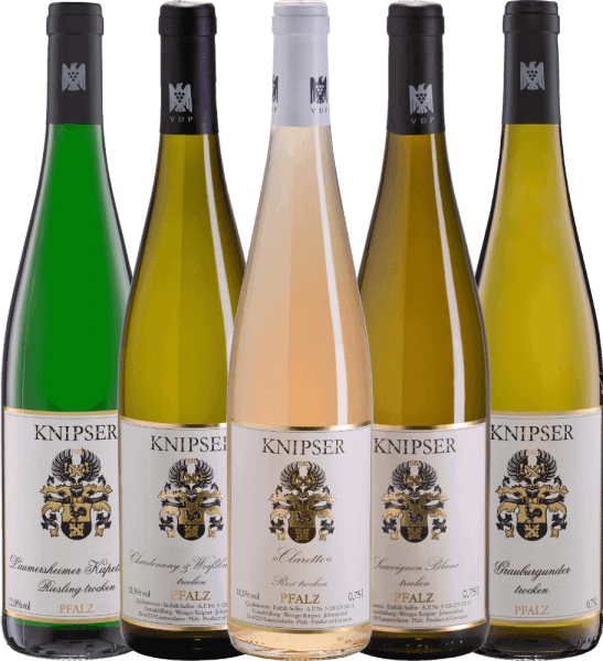 Excellent wines from a top winery. Domestic grape varieties meet international grape varieties in the wines of Weingut Knipser. Sometimes the grape varieties are interpreted all by themselves, like Riesling, Grauburgunder and Sauvignon Blanc. Or together in the Rosé-Cuvée Clarette as well as in the interplay of Chardonnay and Pinot Blanc. It is not for nothing that Gault-Millau has awarded the Knipser winery the best winery in the Palatinate - this winery also occupies a top position on a national level. The best way to convince yourself is with our 5-person introductory package - wines from Weingut Knipser. The winery Knipser introductory package includes: 1 bottle: Laumersheimer Kapellenberg Riesling (dry - 12.3 vol. %)  1 bottle:Clarette Rosé(dry - 11.9% vol.) 1 bottle:Chardonnay & Pinot Blanc (dry - 12.6% vol.) 1 bottle:Pinot Gris (dry - 12.4 vol. %) 1 bottle:Sauvignon Blanc (dry - 11.9% vol.) 1 complimentary VINELLO.wine spout