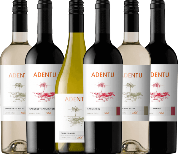 It is the philosophy of Viña Siegel that the wines radiate their very own identity, reflect the Chilean country and are always of outstanding quality. Also in the team of this winery are the pillars of commitment, respect, responsibility and perseverance. Both aspects combine perfectly in the Adentu wine line. The Adentu wines are wonderfully harmonious and balanced - they have their very own, varietal personality. Enjoy the Chilean Adentu wines from Viña Siegel with this 6-piece introductory package. The introductory package of Adentu wines from Viña Siegel includes:  2 bottles: Adentu Sauvignon Blanc (dry - 13.3 vol. %) 1 bottle: Adentu Chardonnay (dry - 13.4% vol.) 1 bottle: Adentu Cabernet Sauvignon (dry - 13.2% vol.) 1 bottle: Adentu Carménère (dry - 13,2 vol. %) 1 bottle: Adentu Merlot (dry - 13.4 vol. %)