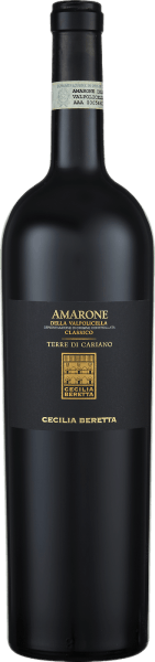 The Terre di Cariano Amarone della Valpolicella Classico DOC by Cecilia Beretta is presented in the glass in a dark red with the lush aromas of cherries, cassis, chocolate and noble spices. This red wine reveals itself warm and soft on the palate with ripe and silky tannins. A balanced Amarone with a long reverberation. Vinification of Cecilia Beretta Terre di Cariano Amarone This cuvée is vinified from the grape varieties Corvina, Rondinella, Corvinone, Croatina and Oseleta. The grapes for this red wine are dried after harvest. 30% of this Amarone matured for 24 months in large wooden barrels, the rest in barriques. Subsequently, the Terre di Cariano was refined in the bottle for 12 months. Food recommendation for the Cecilia Beretta Terre di Cariano Amarone Enjoy this semi-dry red wine with strong meat dishes such as lamb or wild boar. Awards for the Cecilia Beretta Terre di Cariano Amarone Luca Maroni: 90 points for 2011 I Vini di Veronelli: 92 points for 2011 Bibenda: 5 grapes for 2011 Mundus Vini: Gold for 2010 Wine Enthusiast: 90 points for 2010 Robert Parker: 91 points for 2009